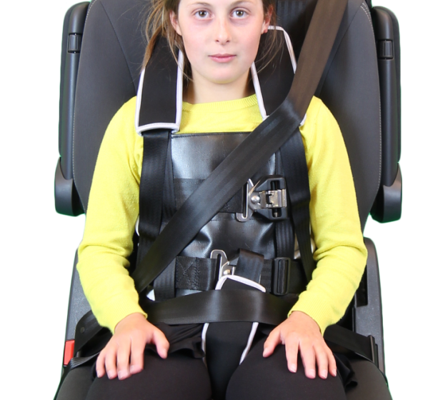 Cool Houdini 31 7 Point Harness Car Seats Harnesses Medifab Ocoug Best Dining Table And Chair Ideas Images Ocougorg